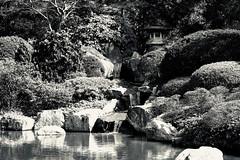 Cascade (MarcBphotos) Tags: cascade jardin japonais black white noir et blanc water garden japanese