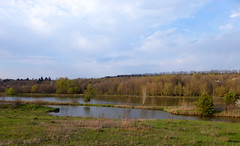 Spring day (vinnserg 18) Tags: nature ukraine shore cloud water lake landscape sky image outdoor watersurface spring day recreation trees relaxation riverbank
