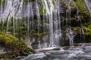 Panther Creek Falls Details