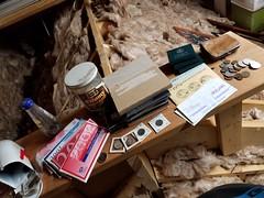 20180418_121044 (Goshzilla - Dann) Tags: attic