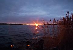 Lens Flare Frame (Tiara Rae Photography) Tags: lens flare frame sun sunburst starset star beams sunset clouds nebraska omaha grasses marshy lake water landscape zorinsky april spring