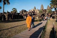 Solemn (D. R. Hill Photography) Tags: angkorwat angkor siemreap cambodia asia southeastasia monk buddhist buddhism orangerobes wat temple nikon nikond750 d750 nikon28mmf18g 28mm primelens fixedfocallength wideangle travel
