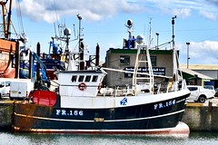 FR156 Endeavour - Fraserburgh Harbour Scotland - 19/4/2018 (DanoAberdeen) Tags: fr156 endeavour fr156endeavour danoaberdeen harbour fish fishing trawler trawlermen candid amateur autumn summer winte spring 2018 scallops salmon trout mackrel trawlers fishingboat bluesky nikon aberdeenshire aberdeen grampian northeastscotland shipspotting northsea seafarers maritime fishauction bonnyscotland fishtown fishingvillage thebroch broch fraserburghscotland dock boat ship vessel fraserburgh thebrooch highlands cod shellfish fishingtown scottishtrawlers fishingtrawlers whitefishport whitefish haddock creels
