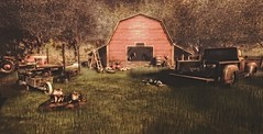 Around Robin Hood's barn (Decorizing) Tags: tractor hive drawers sf tlc chicken gacha orchid picnic jian dogs dabes butterflies badunicorn lounger piglets mesh sl decoration decorizing ps illuminate