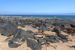 Rocks,St Combs Beach_may 18_636 (Alan Longmuir.) Tags: rocks stcombsbeach grampian aberdeenshire stcombs