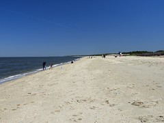 Cape May, NJ 5-24-18 (skybeing) Tags: capemay new jersey