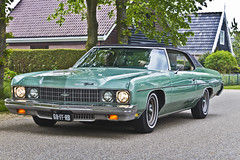 Chevrolet Impala Hardtop Coupé 1973 (8503) (Le Photiste) Tags: clay chevroletdivisionofgeneralmotorsllcdetroitusa chevroletimpalahardtopcoupé cc 1973 chevroletimpalacustomseries1blmodel1l47hardtopcoupéfisherbody americanluxurycar simplygreen oddvehicle oddtransport rarevehicle waarlandthenetherlands thenetherlands 68ffrb sidecode5 afeastformyeyes aphotographersview autofocus artisticimpressions alltypesoftransport anticando blinkagain beautifulcapture bestpeople'schoice bloodsweatandgear gearheads creativeimpuls cazadoresdeimágenes carscarscars canonflickraward digifotopro damncoolphotographers digitalcreations django'smaster friendsforever finegold fandevoitures fairplay greatphotographers peacetookovermyheart hairygitselite ineffable infinitexposure iqimagequality interesting inmyeyes lovelyflickr livingwithmultiplesclerosisms myfriendspictures mastersofcreativephotography niceasitgets photographers prophoto photographicworld planetearthtransport planetearthbackintheday photomix soe simplysuperb slowride saariysqualitypictures showcaseimages simplythebest thebestshot thepitstopshop themachines transportofallkinds theredgroup thelooklevel1red simplybecause vividstriking wow wheelsanythingthatrolls yourbestoftoday oldtimer