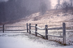 It's snowing again -- doesn't seem fair. (Chancy Rendezvous) Tags: chancyrendezvous davelawler blurgasmcom blurgasm snow snowfall snowing weather fence field trees path burncoat massachusetts flakes snowflakes
