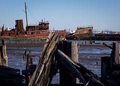 arthur killed (primemundo) Tags: boat boatgraveyard boneyard dock rust statenisland ny arthurkill abandoned