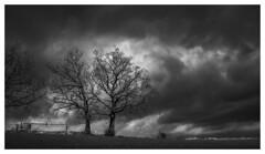 Dark Clouds (Wayne Interessiert's) Tags: fujifilmxpro landscape paysage sauerland wolken clouds nuages sky ciel monochrome bw blackwhite noirblancphoto bäume trees arbres