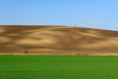 Southern Moravia (Paweł Gałka) Tags: green nature landscape moravia tree blue landschaft field morawy