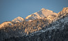 Rendezvous Mountain, Teton Range (T.M.Peto) Tags: rendezvousmountain tetonrange tetons teton jacksonhole wyoming wy landscape landscapephotography landscapes scenic scenery sceneryphotography outdoor outdoors outdoorphotography nikonoutdoors nikon nikond3300 nikonphotography adobelightroom lightroom outside god'screation wanderlust travel travelphotography land morning morningsunlight snow winter winterscene winterphotography snowy snowcap mountain mountains mountainpeak mountainside mountainrange
