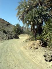 Sur la piste, entre Zagora et M'Hamid (5) (François Magne) Tags: maroc piste zagora mhamid atlas