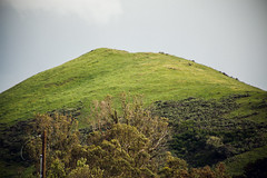 hilltop [Day 3393]