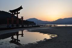 DSC_0067 (tcchang0825) Tags: japan miyajima torii shrine sea sunset dawn