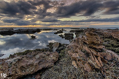 the shallows (TLP images) Tags: tlpimages bullibeach illawarra wollongong sunrise ocean beach cloudporn lowtide