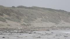 High Tide (blachswan) Tags: portfairy victoria australia southernocean hightide thecutting