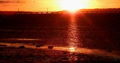 Sunset... Always magic (Hugo Albuquerque) Tags: alcochete sunset paisagem magia pôrdosol rio riotejo natureza nature naturaleza foto fotografia fotografiadenatureza