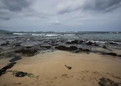 Turtle Beach Headlands (fantommst) Tags: lisaridings fantommst laniakea turtle beach honolulu oahu hawaii hi usa us sea seascape ocean pacific cloudy sand rock shelf tide empty