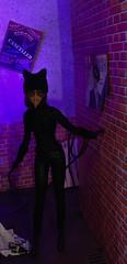 On The Prowl (MaxxieJames) Tags: catwoman selina kyle dc dcu barbie mattel doll collector gotham diorama custom customised batman ooak dolls