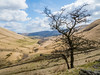 NB-86.jpg (neil.bulman) Tags: kinder countryside landscape peakdistrict nature nationalpark derbyshire beauty hills edale hopevalley nationaltrust england unitedkingdom gb