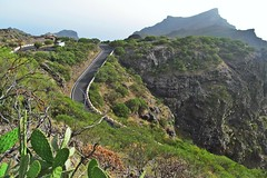 winding road :) (green_lover) Tags: road curve bend landscape tenerife canaryislands spain cactus opuntia