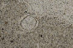 Natures (not so perfect) Circles (brucetopher) Tags: macromondays circles sand water nature natural sea coast beach texture art foundart found wet round edge shoreline shore
