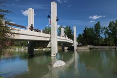 A walk around Calgary (davebloggs007) Tags: calgary alberta canada city parks