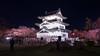 弘前城 (かがみ~) Tags: aomori sakura leicaq hirosaki leica castle yozakura japan typ116 さくら 夜桜 天守 弘前 日本 青森 hirosakishi aomoriken jp