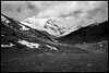 FujiFilm Gw690 II + Ilford Hp5 (t h o m a s h e k) Tags: film fm fuji formatomedio fujifilmgw690 fujigw690 analogico argentico analogic bw bn byn developed epsonv500 gw690ii gw690 hp5 ilfordhp5 kodakhc110 pelicula landscape paisaje valldeboi aigüestortes