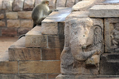 Upper Shivalaya à Badami, Inde (voyagesphotos) Tags: inde india karnataka badami temple religion hindouisme hindou hindu