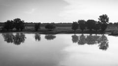 Elbe bei Bleckede (difridi) Tags: difridi elbe fluss river landscape landschaft blackandwhite schwarzweiss monochrome wasser water natur nature trees bäume silhouette gegenlicht frontlight spiegelung reflection