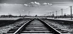 The railway to hell (David Feuerhelm) Tags: blackandwhite contrast bw schwarzundweiss noiretblanc railway track auschwitz poland nikon d750 2470mmf28 history
