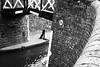 Bridge 36 (halifaxlight) Tags: england warwickshire lapworth northstratfordcanal grandunioncanal bridge canal bricks water numberplate bw waterway