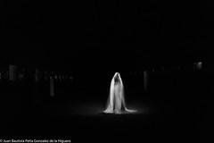 Nave Abandonada ( calvin1961) Tags: largaexposición longexposure lightpainting pinturaconluz retrato portrait noche night canoneos canon ef2470mm ef2470mmf4lisusm 6d sueca valencia comunidadvalenciana españa spain albuferadevalencia