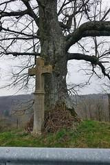 altes Wegkreuz am Straßenrand (mama knipst!) Tags: kreuz croix baum tree klostersteinfeld eifel nrw deutschland germany allemagne