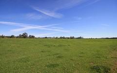2718 Jerrys Plains Road, Jerrys Plains NSW