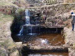 Calf Hey Reservoir (and Bramble) (keibr) Tags: blipfoto bramble extra keibr nearblip spring uktrip walk