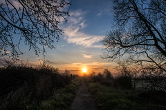 Marching on (@bill_11) Tags: pegwellbay unitedkingdom isleofthanet naturereserve england kent cliffsend gb