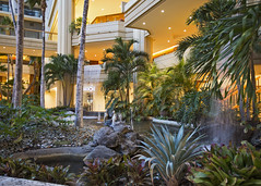 Hyatt Gardens (fantommst) Tags: lisaridings fantommst waikiki hyatt regency honolulu hawaii usa us hi hotel gardens courtyard interior waterfall