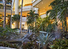 Hyatt Gardens (fantommst) Tags: lisaridings fantommst waikiki hyatt regency honolulu hawaii usa us hi hotel gardens courtyard interior waterfall