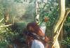The wild oranges. (Hijo de la Tierra.) Tags: film analog 35mm woods forest orange redhead curlyhair friends tree nature uruguay hijodelatierra canelones agustíngaleano