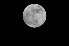 New year moon (Timmers22) Tags: fullmoon moon carbisbay england unitedkingdom gb