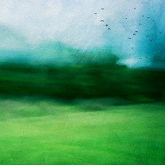 Land (borealnz) Tags: abstract blur movement land landscape newzealand green hills moody atmospheric