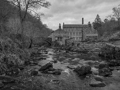Cotton Mill (Ian M Bentley) Tags: hardcastle hardcastlecrags nationaltrust gibsonmill cottonmill 1800c 19thcentury historic hebdenbridge beautyspot southpennines woodland streams tumblingstreams glorious rapids blackwhite monochrome olympus omd em1ii tamron14150mm megazoom wideangle spring march leaves westyorkshire england uk outdoor landscape waterscape water river creek serene foliage plants crystal clear light hebdenbeck midgehole forest rock natural naturalspring peaceful valley ancientwoodland trees sky
