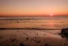 L'envolée (Fabrice Denis Photography) Tags: seascapephotography france sunset sunsetphotographer coastalphotography paysdelaloire sunsetphotos lepine vendee iledenoirmoutier beachphotography plage ocean sunsetpics sunsetphotography coastal oceanphotography seascapes plagedelepine seascapephotographer beach seascapephotos sea lépine fr