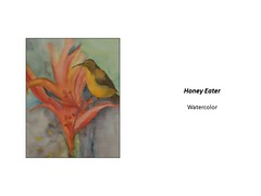 """Honey Eater • <a style=""""font-size:0.8em;"""" href=""""https://www.flickr.com/photos/124378531@N04/41366586482/"""" target=""""_blank"""">View on Flickr</a>"""