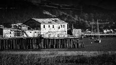 Wharf at Half Moon Bay B&W (Charlie Day DaytimeStudios) Tags: beach california coastline halfmoonbayca highway1 landscape ocean pacificcoast pacificcoasthighway rocks wharf