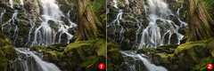 Cheap Vs Expensive Camera - Which is which? (Gavin Hardcastle - Fototripper) Tags: comparison waterfall moss trees creek mary vine falls water cedar gavinhardcastle vancouverisland