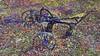 20180325_162625_d (wos---art) Tags: bildschichten landwirtschaft historische geräte pflug